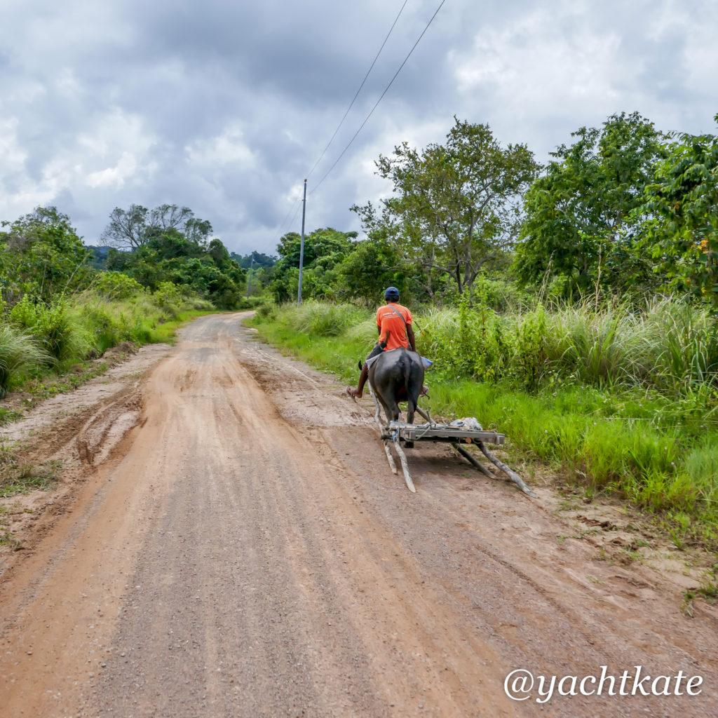 Philippines Rice Fields, Heather Francis-12.jpg