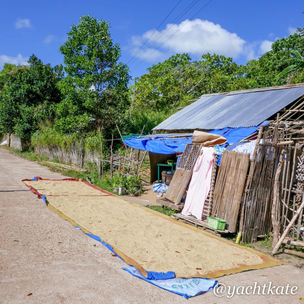 Philippines Rice Fields, Heather Francis-15.jpg